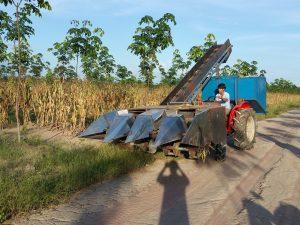 Máy thu hoạch trái bắp